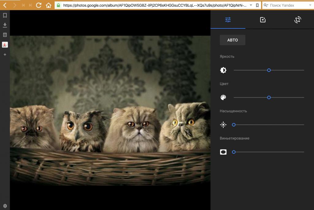 Фотохостинг с веб камеры виртуальный сервер понятие